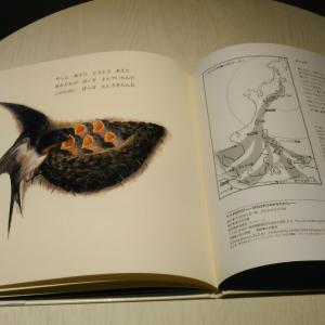 会員様から素敵な絵本「ツバメのたび」をお借りしました