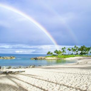 ハワイの現状といつ行ける?今後のハワイ旅行
