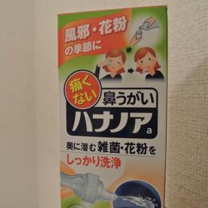 花粉症対策【鼻うがいハナノアa】実践レビュー!苦手な鼻うがいが克服出来る!?