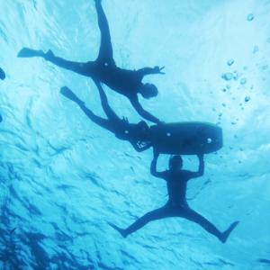 【オクマナビ】沖縄本島北部オクマで熱帯魚と一緒に泳ごう!