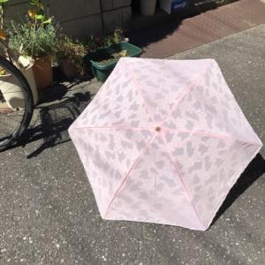 日傘の登場