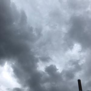雨、散歩、動画の3本です❣️