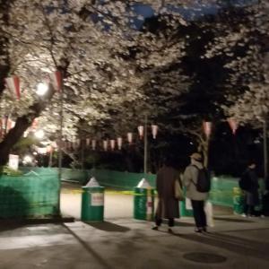 封鎖された上野公園の様子