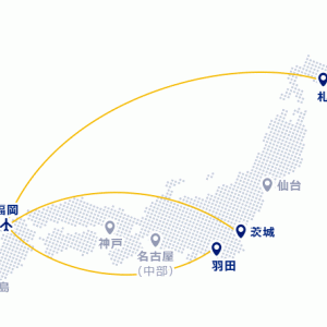 ANA/JALからスカイマークへ 大改悪!