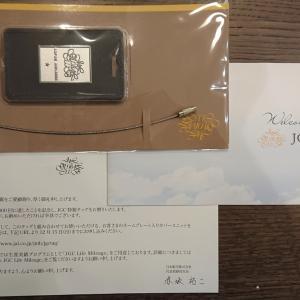 JALさんからプレゼントをいただきました!