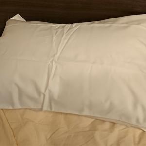 陸マイラー 枕購入!