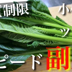【レンジでサッと作れる低糖質な副菜♬】糖質量は0.9g!「小松菜とツナ缶のスピード小鉢」の作り方