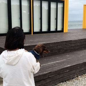 ワンコとぐっさん家のトレーラービーチハウスの別荘を見てきた〜愛知県知多半島