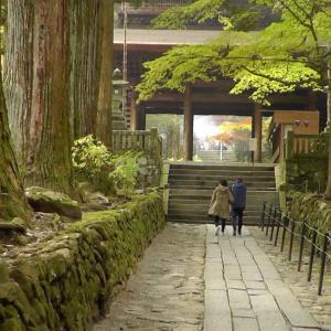 【光前寺】ミニチュアダックスと美しく紅葉した庭園のお寺に行く〜長野県駒ヶ根市