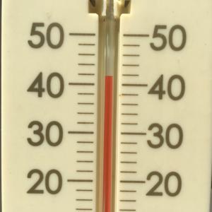 またまた、暑いですね