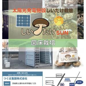 令和の投資太陽光発電低圧格安、分割払い、利回り30~40%、老後貧困年金、しいたけ菌床栽培
