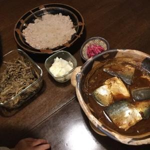 さば味噌煮、餃子、お弁当、おでん、豚スペアリブの叉焼風 2017.11.16~19