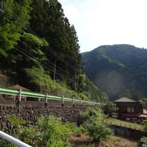 南秋川 熊倉沢右俣(右沢遡行、左沢下降)(2019.6.1)