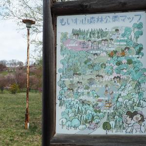 【桜名所】大樹町市街地からみえる桜スポット「萠和山森林公園」
