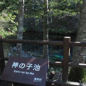 【景色】コバルトブルーの神秘な池!清里町「神の子池」