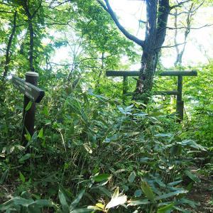 """【登山】ロープに梯子!アドベンチャー感満載の絶景の登山道""""白龍胎内巡り"""""""