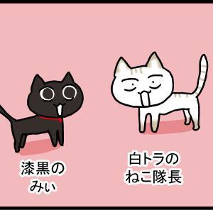黒猫に隠された能力