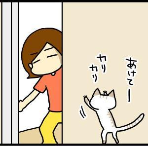 ②家猫と外猫
