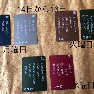 6月14日月曜日から20日日曜日までの五常カードからのメッセージ