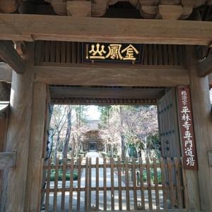 武蔵野の面影を残す古刹「平林寺」へ