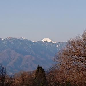 八ヶ岳南麓の春はまだら模様に進行中