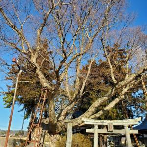 恵方参り2021(八ヶ岳南麓編)