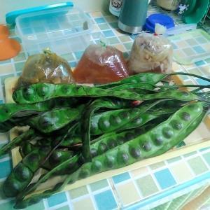 南タイ料理が届きました。
