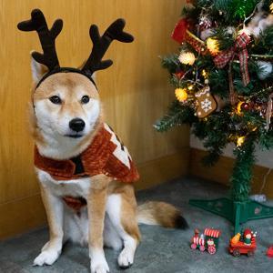 令和元年も亜門さんのクリスマス