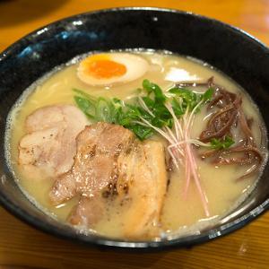 お店紹介 麺食堂 ヨドガワベース