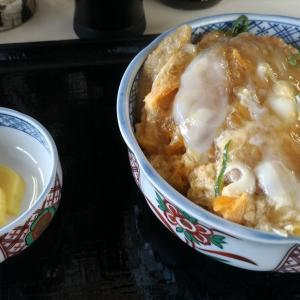 平生町ひろみ食堂のカツ丼にリベンジ