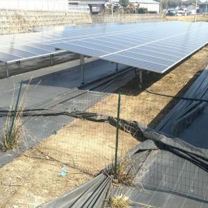 太陽光発電所の除草対策における防草シートのデメリット