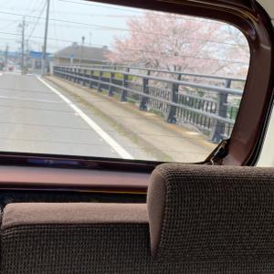春の香りをお届け♫ 【滋賀 草津 ヘッドスパ専門店 サロンドルポ】