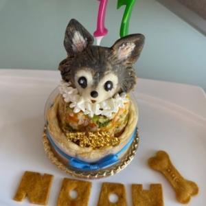 atellier Wag アトリエワフさんのケーキ♪