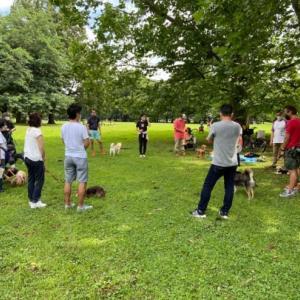 7月グループセッションレポートin 東京