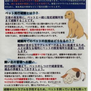 「ペット同行避難」にかかわるチラシ 東京都調布市