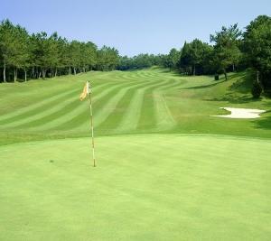 ゴルフクラブを購入し、すぐにコースデビューをしちゃう。みたいな・・・。