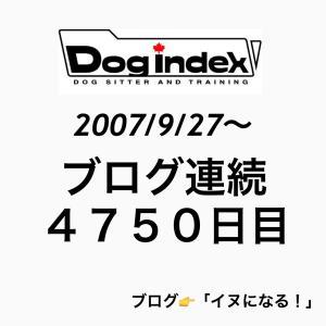 ブログ連続4750日目