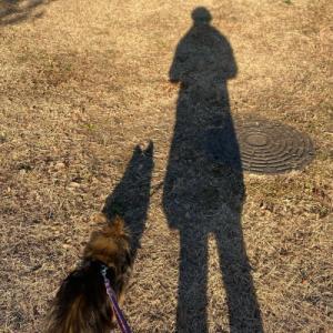 犬の代弁 私が言わず誰が言う