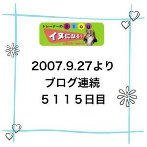 ブログ連続5115日目