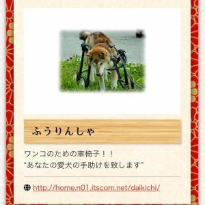 日本犬の祭典ZIPANG マーケット情報 『ふうりんしゃ』