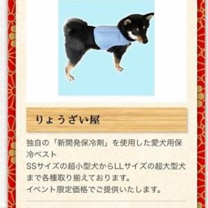 日本犬の祭典ZIPANG マーケット情報 『りょうざい屋』