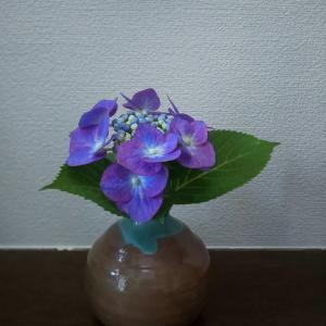 お花を飾ってリラックス。