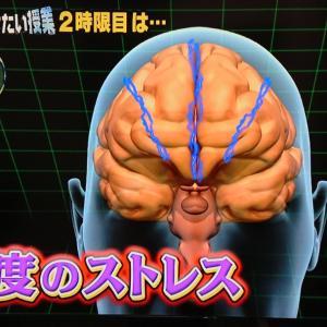 ストレスで脳が変形!取り返しがつかない子育ての前に。