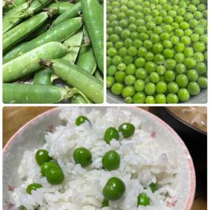 夕ごはんコーナーとお米の消費量について。