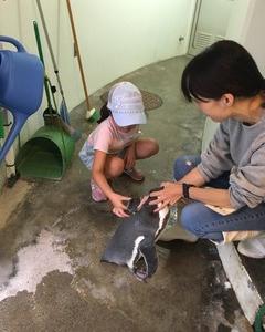 【江戸川区 行船公園】動物公園で飼育体験!