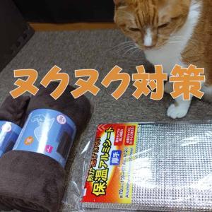 猫の寒さ対策用にマットと毛布を用意したのですが・・・