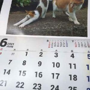 カレンダーの話とかめんまとか。