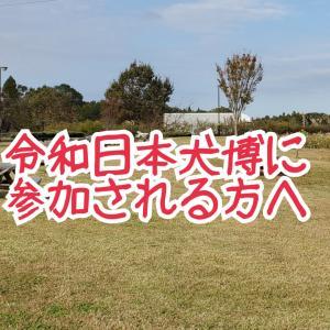令和日本犬博とのトラブル