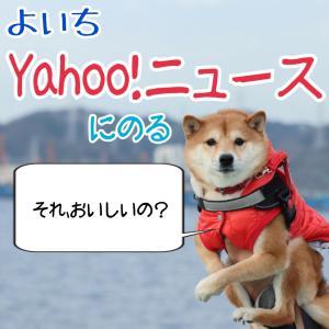 よいち、Yahoo!ニュースのる