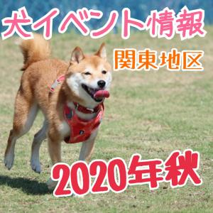よいち調べ‼️犬イベント情報 2020秋 関東